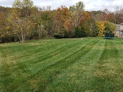 Lawn Care Service in Antioch , TN, 37013