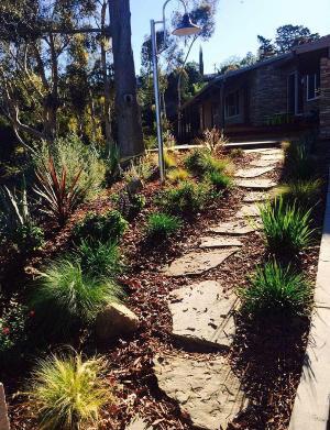 Lawn Care Service in Lemon Grove, CA, 91946