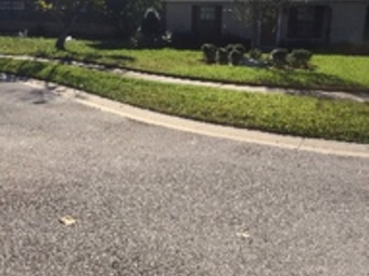 Lawn Care Service in Winter Springs , FL, 32708