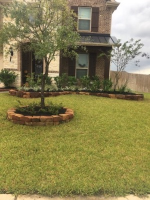 Lawn Care Service in Tomball, TX, 77375
