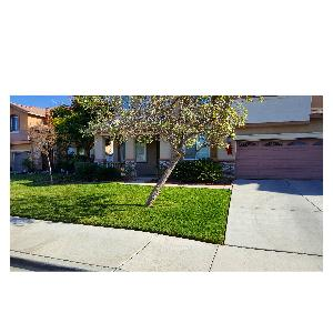 Lawn Care Service in Hemet, CA, 92544