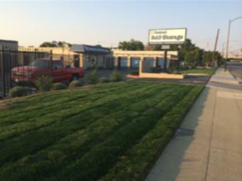 Lawn Care Service in Sunnyvale, CA, 94086
