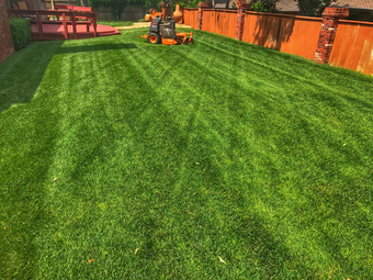 Lawn Care Service in Oklahoma City, OK, 73120
