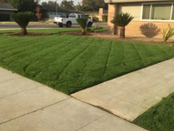 Lawn Care Service in Fowler , CA, 93625
