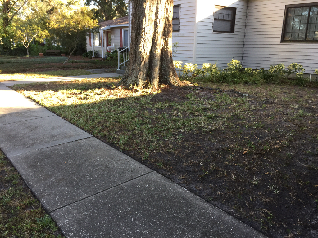 Lawn Care Service in St Petersburg, FL, 33713