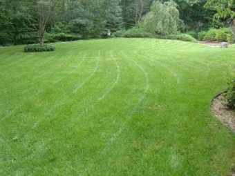 Lawn Care Service in Georgetown, GA, 39854