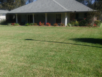 Lawn Care Service in Hammond , LA, 70403