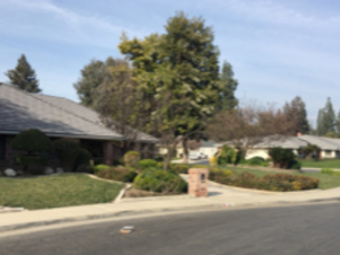 Lawn Care Service in Bakersfield, CA, 93384