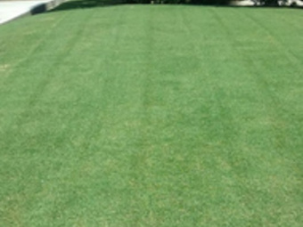 Lawn Care Service in Visalia, CA, 93277