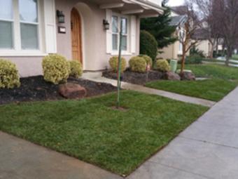 Lawn Care Service in Sac, CA, 95826