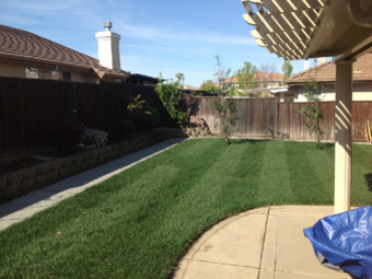 Lawn Care Service in Sacramento, CA, 95833
