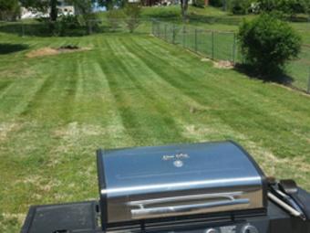 Lawn Care Service in Hendersonville , TN, 37075