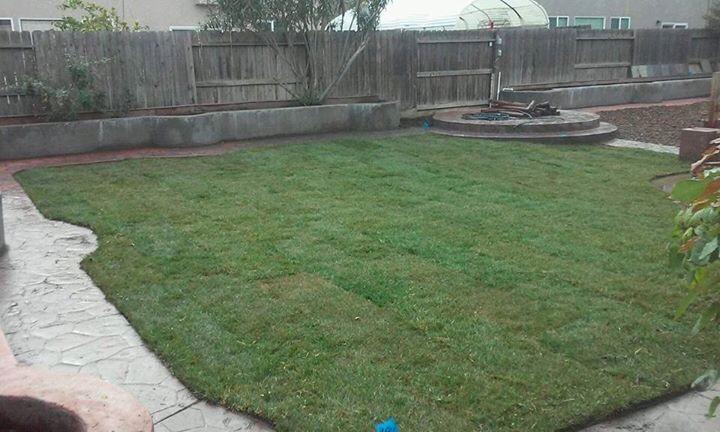 Lawn Care Service in Los Banos , CA, 93635