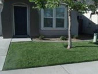 Lawn Care Service in Sacramanto, CA, 95838