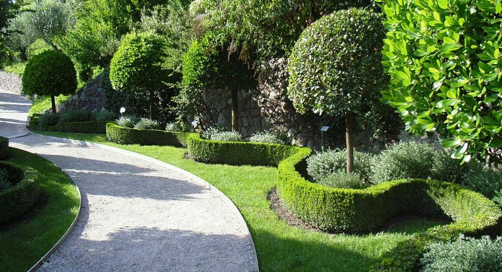 Lawn Care Service in Sacramento, CA, 95817