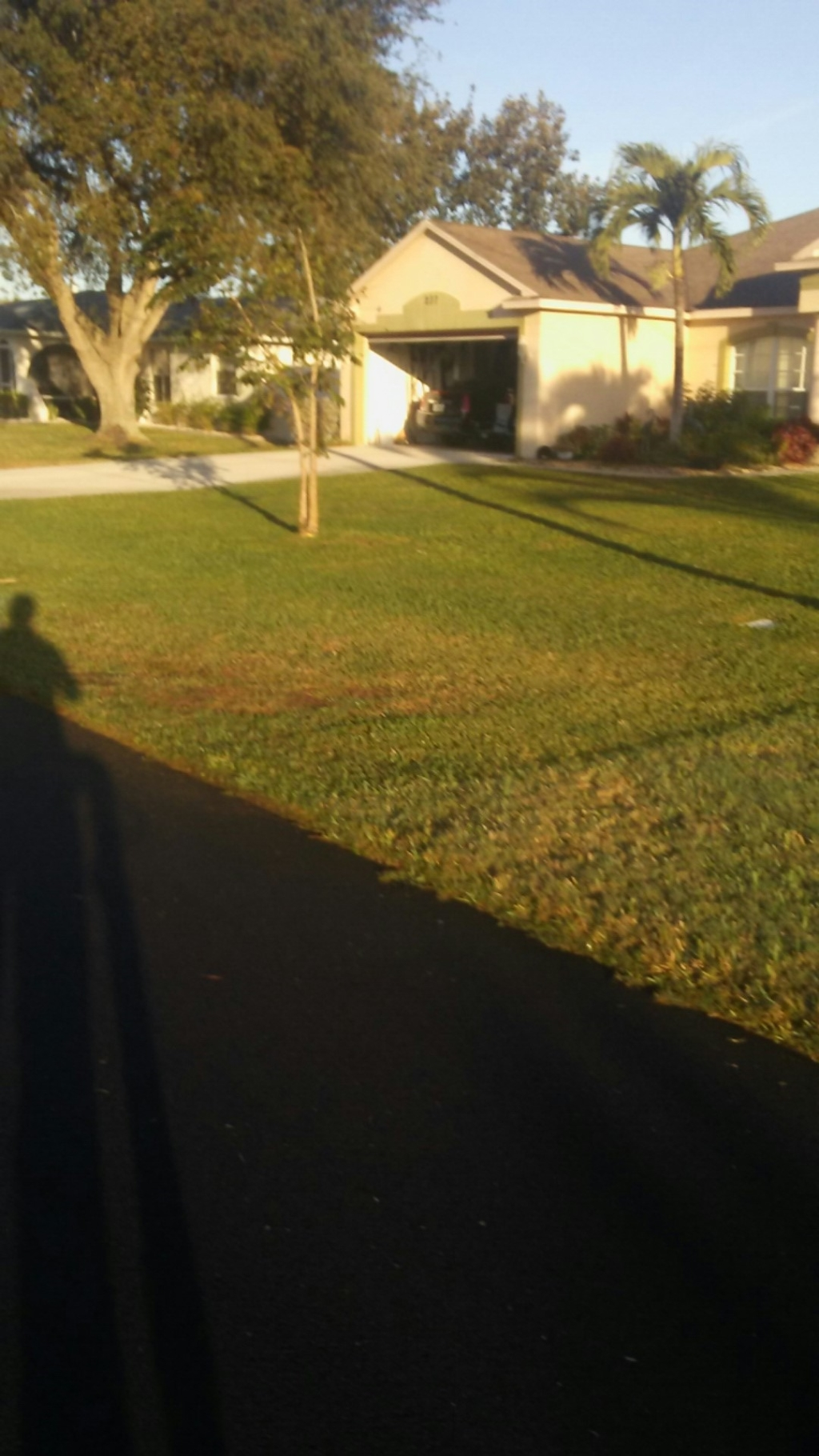 Lawn Care Service in Fort Myers, FL, 33908