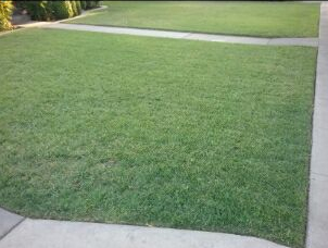 Lawn Care Service in Clovis, CA, 93612