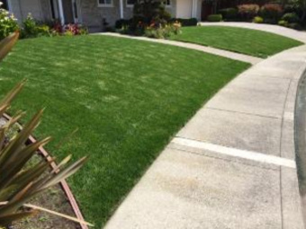 Lawn Care Service in Stockton, CA, 95209