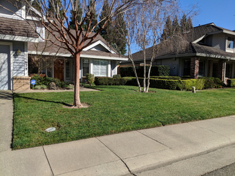 Lawn Care Service in Rancho Cordova, CA, 95670