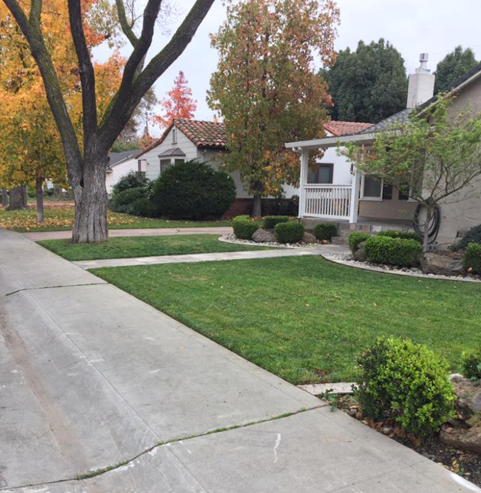 Lawn Care Service in Stockton, CA, 95202