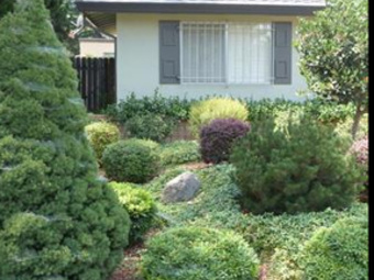 Lawn Care Service in Citrus Heights, CA, 95621