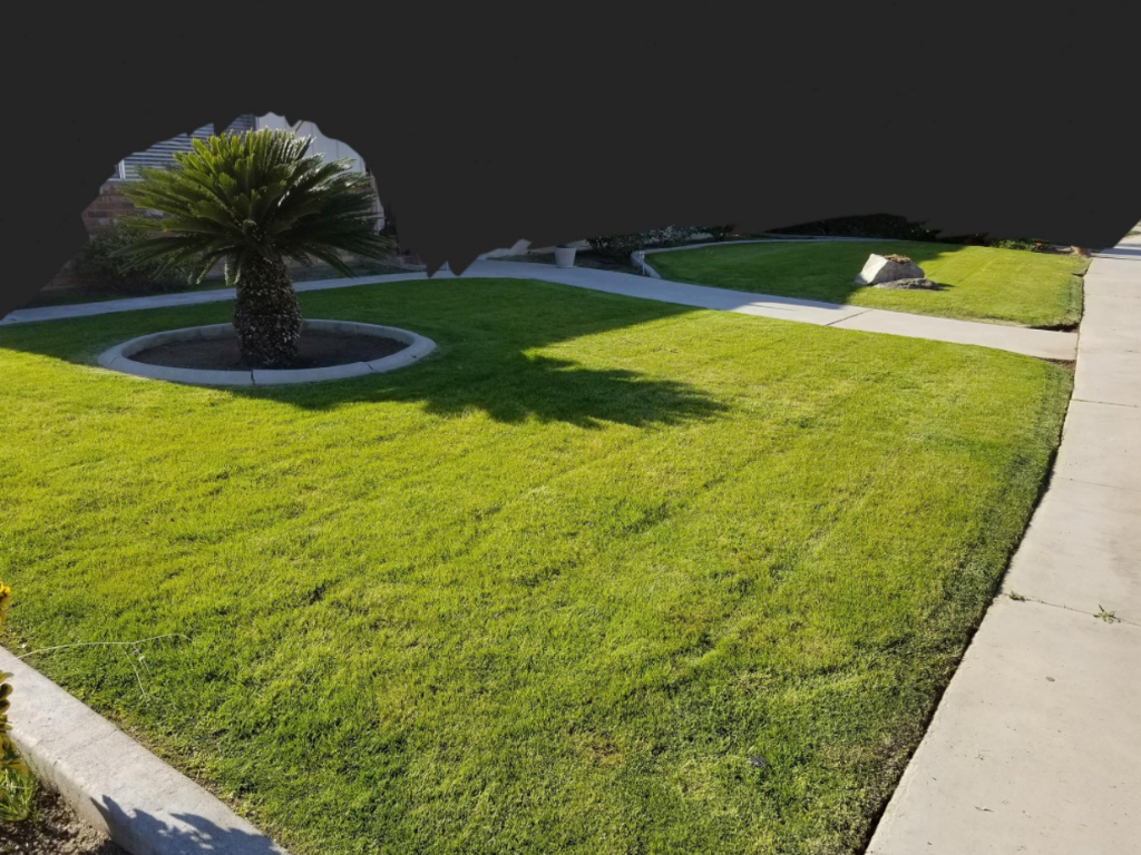 Lawn Care Service in Wasco , CA, 93263