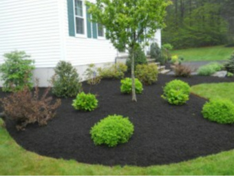 Lawn Care Service in Pittsburgh, PA, 15239