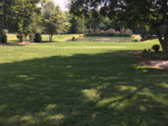 Lawn Care Service in Nashville, TN, 37211