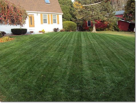 Lawn Care Service in Jefferson , GA, 30549