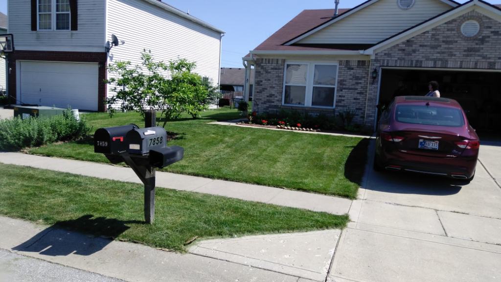 Lawn Care Service in Indianapolis, IN, 46226