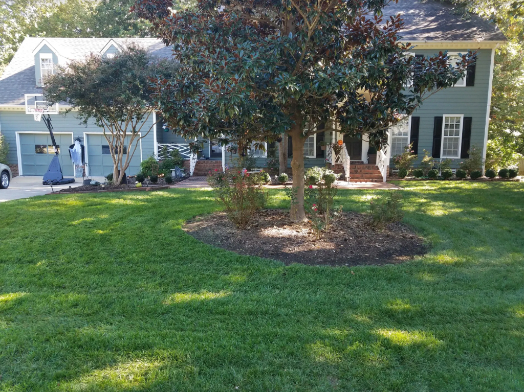 Lawn Care Service in Raleigh, NC, 27615