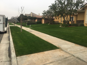 Lawn Care Service in Bakersfield , CA, 93301