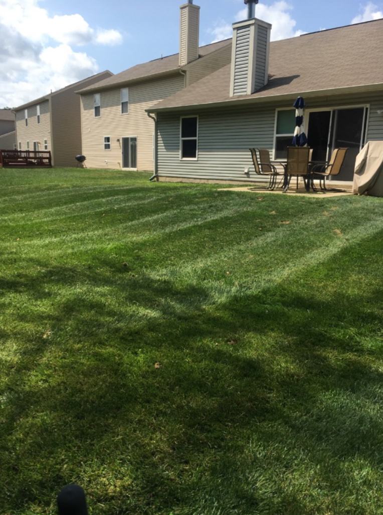 Lawn Care Service in Greenwood, IN, 46143