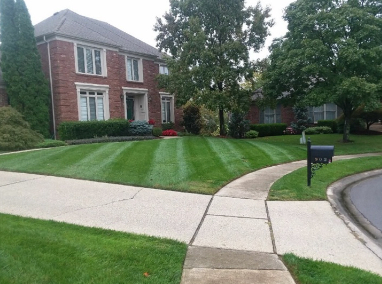 Lawn Care Service in Louisville, KY, 40228