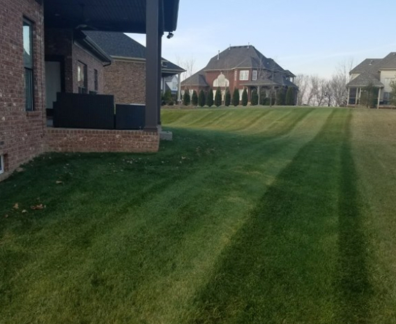 Lawn Care Service in Radcliff, KY, 40160