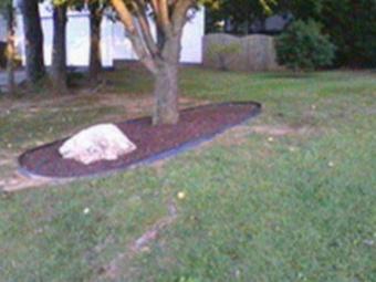 Lawn Care Service in Carrboro, NC, 27510