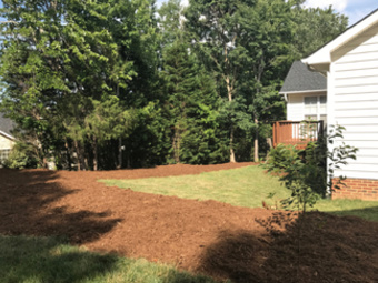 Lawn Care Service in Cary, NC, 27511