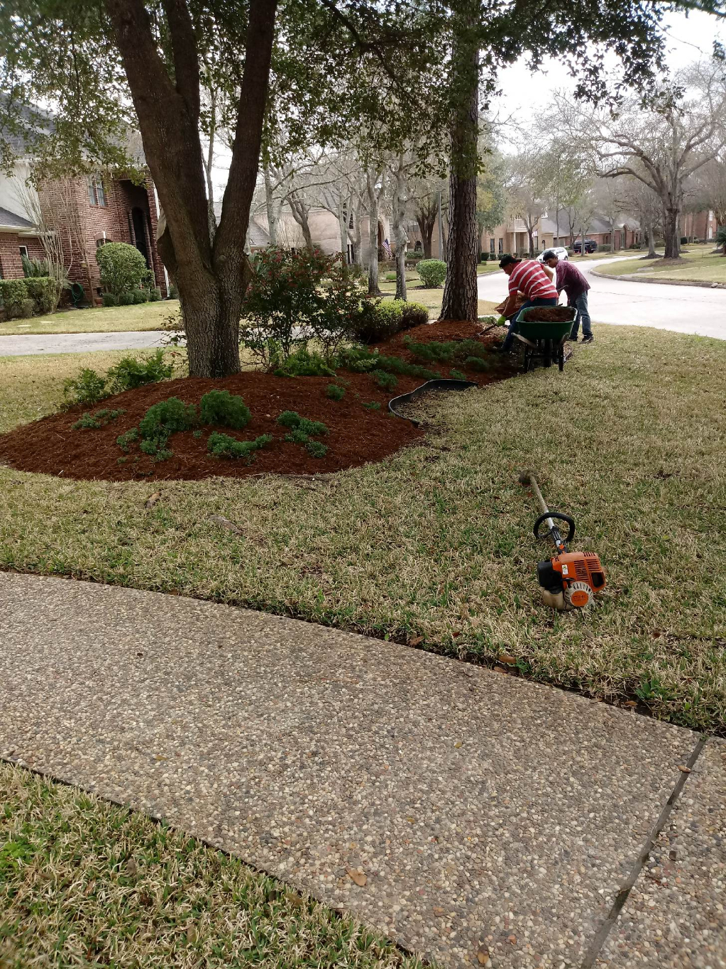Lawn Care Service in Houston, TX, 77064
