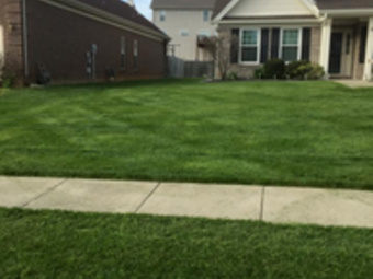 Lawn Care Service in Louisville, KY, 40219