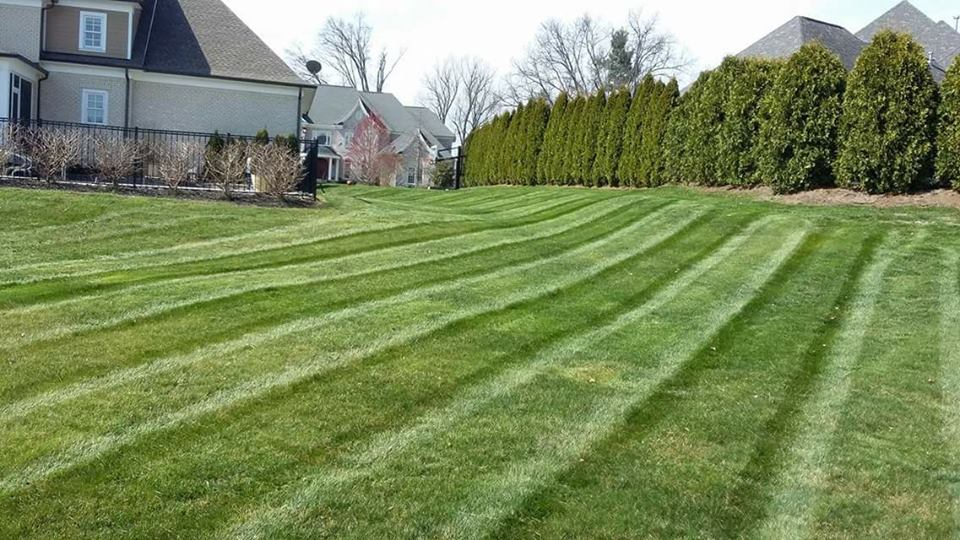 Lawn Care Service in Louisville, KY, 47130