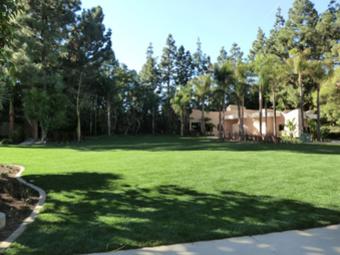 Lawn Care Service in Sheridan, IN, 46069