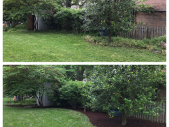 Lawn Care Service in Alexandria, VA, 22312