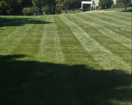 Lawn Care Service in Shepherdsville, KY, 40165