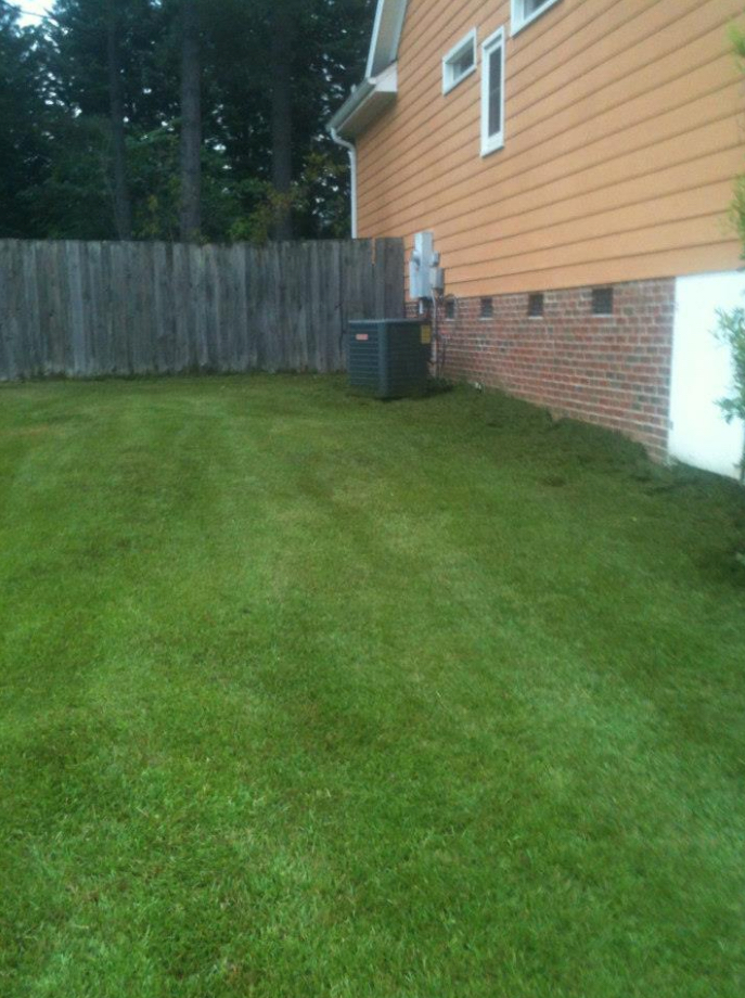 Lawn Care Service in Raleigh , NC, 27601