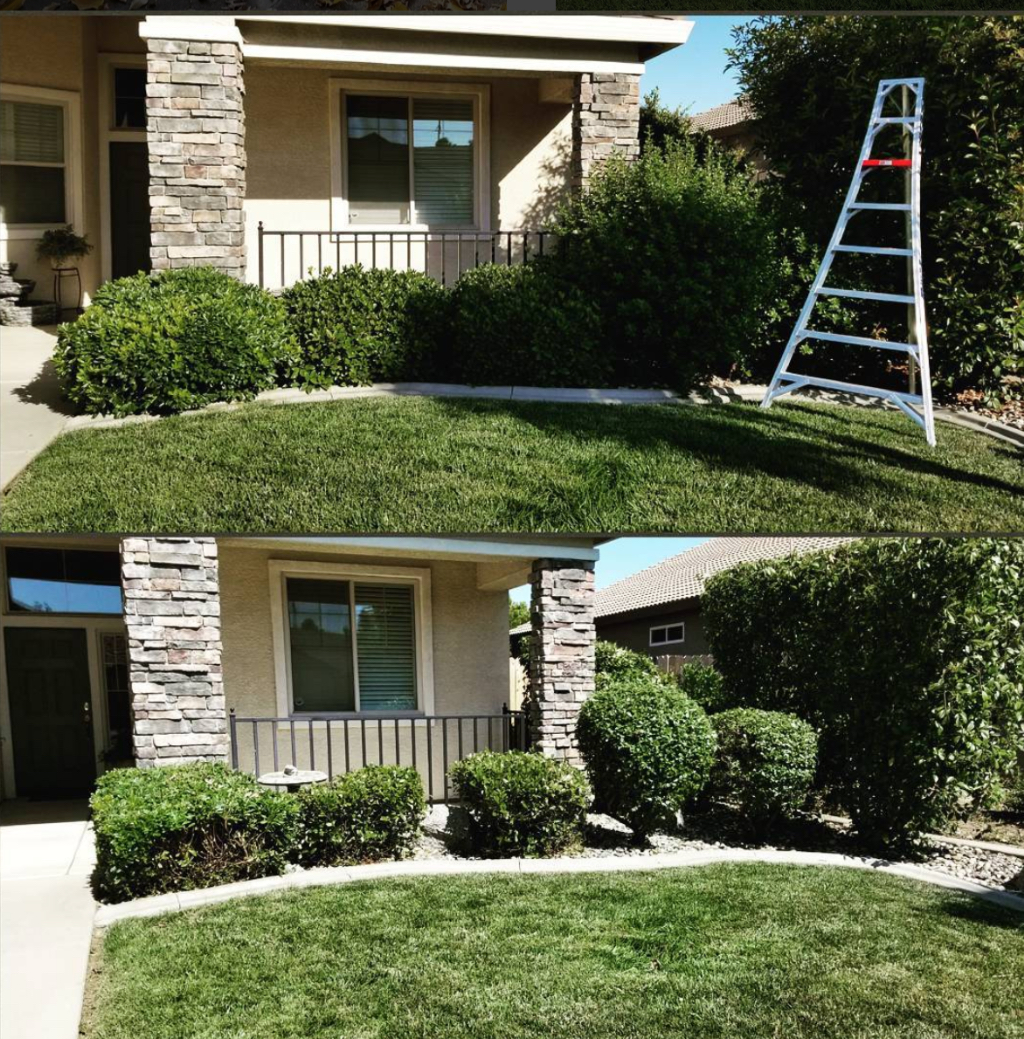 Lawn Care Service in North Highlands, CA, 95660