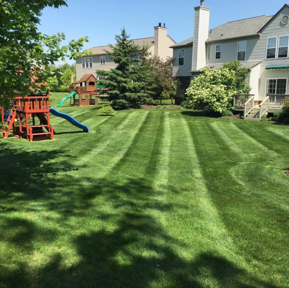 Lawn Care Service in La Grange, KY, 40031
