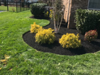 Lawn Care Service in Murfreesboro , TN, 37130