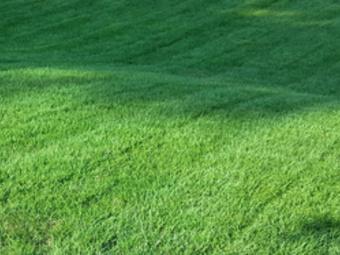 Lawn Care Service in Ellisville, MO, 63021