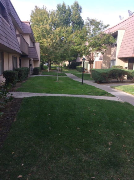 Lawn Care Service in Carmichael, CA, 95608