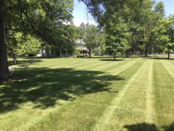 Lawn Care Service in Cincinnati, OH, 45243